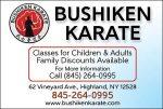 Bushiken Karate